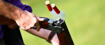 Clay Pigeon Shooting Does Not Involve Any Harm To Birds